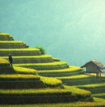 Tajlandia - niezwykła kultura, pyszne jedzenie i rajskie plaże!